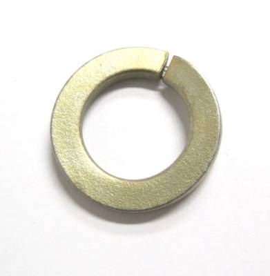 Bosch Diesel Parts - Lock Washer for P7100 Injection Pump Drive Shaft - 94-98 Dodge 5.9L 12V