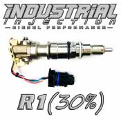 Industrial Injection - Industrial Injection - Industrial Injection - Industrial Injection - Reman R1 30% Over 6.0L 2003-2007 Ford Injector
